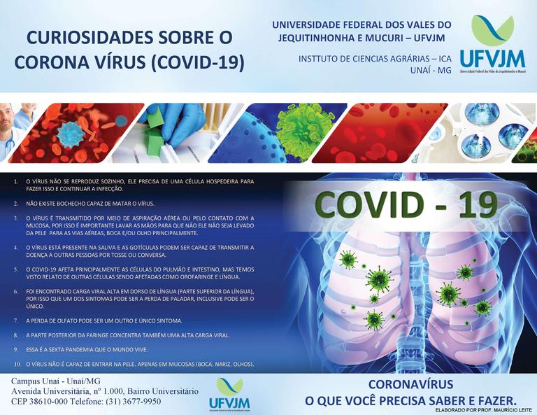 CURIOSIDADES SOBRE O CORONAVÍRUS (COVID-19)