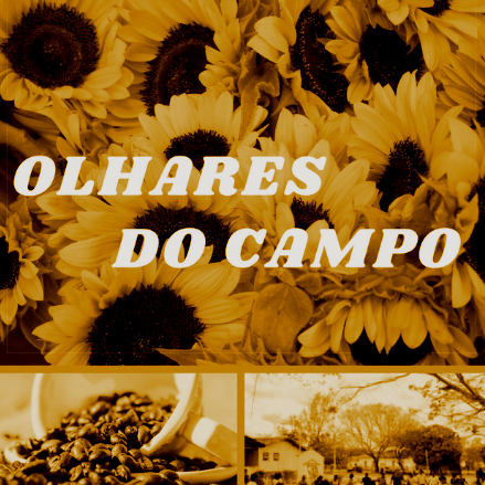 Foto do perfil Olhares do Campo no Facebook