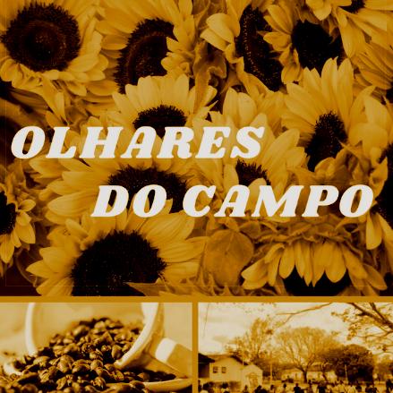 Foto do perfil Olhares do Campo no Facebook